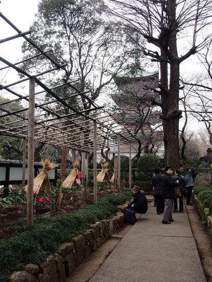 2014-01-25-14牡丹園-12%.jpg