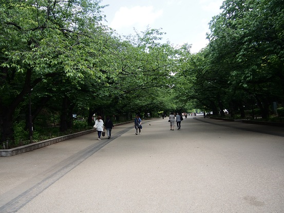 2014-05-07-2公園内の遊歩道-12%.jpg