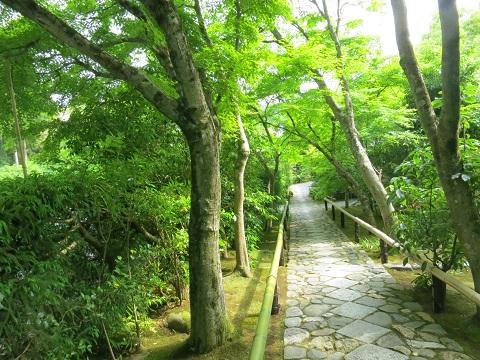 2014-05-25-20光悦寺境内へ-2-12%.jpg