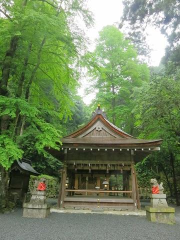 2014-05-26-9奥宮-2-12%.jpg