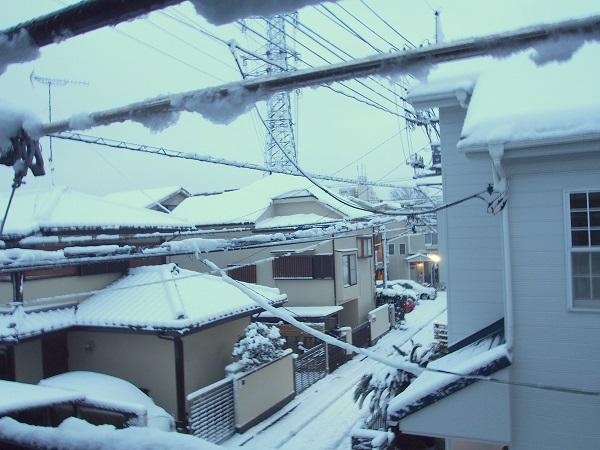 2016-1-18-1朝の降雪-2-13%.jpg