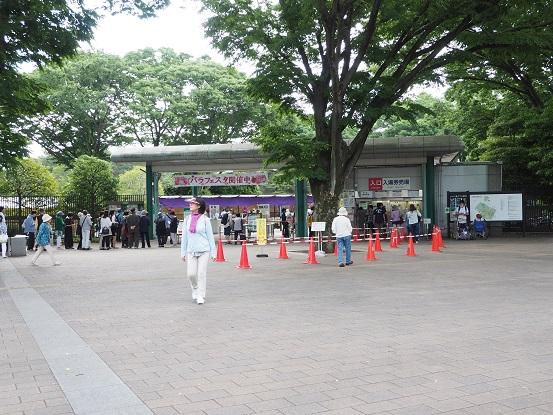 2017-5-28-1神代植物公園正門-12%.jpg