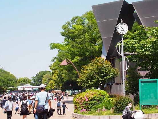 2018-5-5-1上野動物園前-12%.jpg